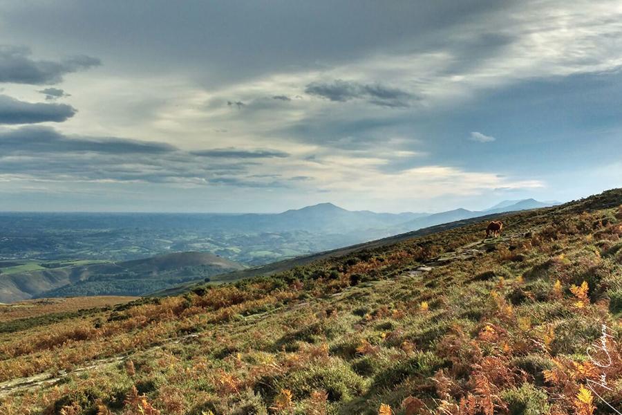 Randonnée Pays Basque